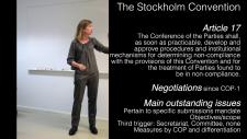 Embedded thumbnail for Compliance under the Stockholm Convention