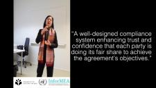 Embedded thumbnail for Why is a compliance mechanism so important?