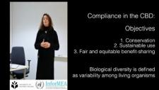 Embedded thumbnail for Compliance under biodiversity - related conventions - CBD