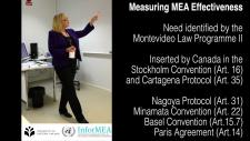 Embedded thumbnail for What is effectiveness of MEAs