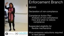 Embedded thumbnail for KP Compliance Mechanism - Enforcement and Facilitative Branches / Case G77