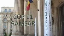 Embedded thumbnail for Video – Ramsar COP11 movie