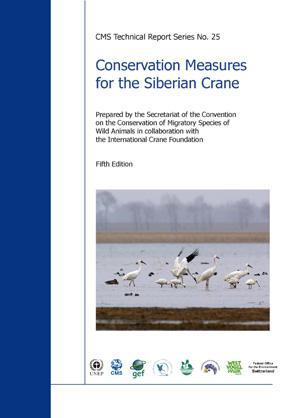 CMS-CP-Cover_2010_25.jpg