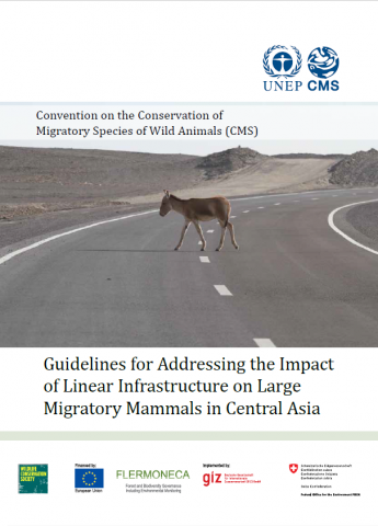 CMS_Infrastructure__Guidelines_Cover_Page.png