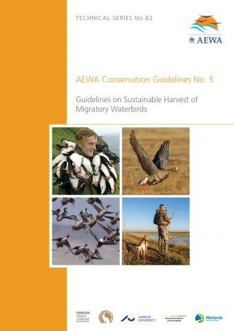 Conservation_guideline_no5_new.jpg