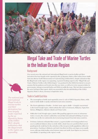 IOSEA Factsheet_FA_Page_1.jpg