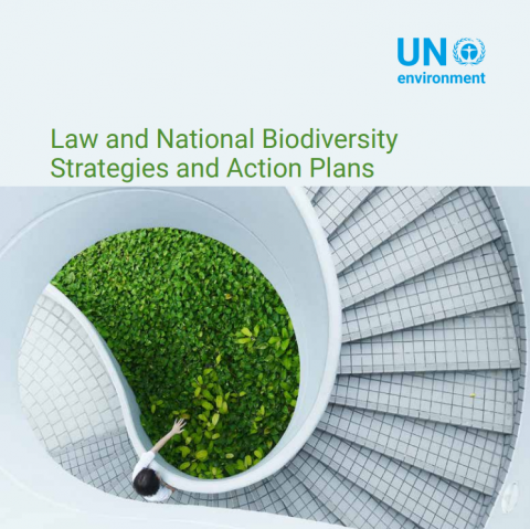 Law and National Biodiversity Strategies and Action Plans.PNG