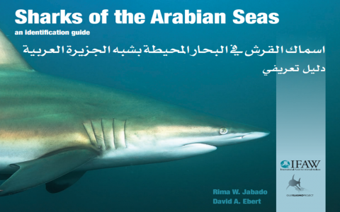 Sharks of the Arabian Seas Cover.png