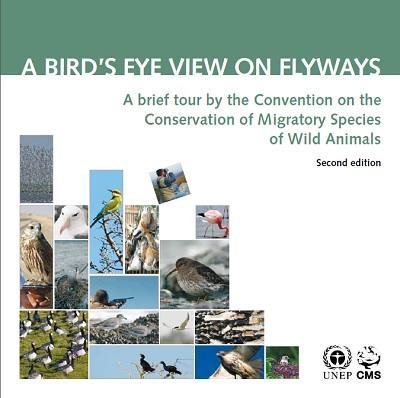 cms_pub_pop-series_bird-eye-view-flyway_cover.jpg