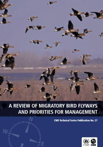 cms_pub_tech-series_review-flyway-priorities-management_cover.jpg