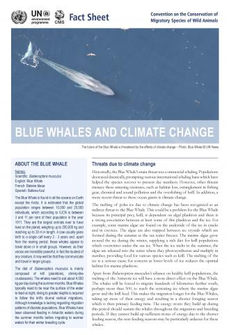 fact_sheet_blue_whale_climate_change_Page_1.jpg