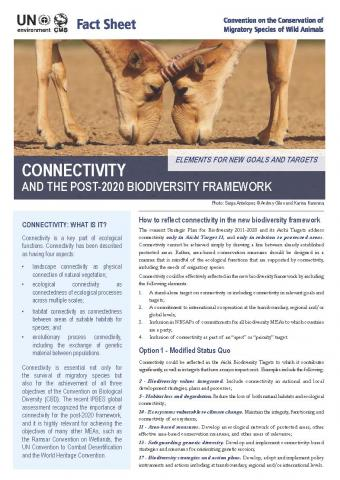fact_sheet_connectivity_2_alternative_Page_1.jpg