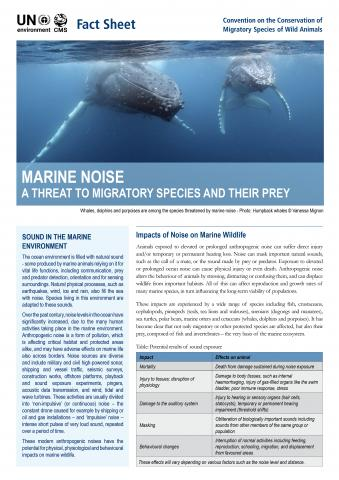 fact_sheet_marine_noise.jpg