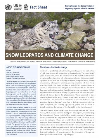 fact_sheet_snow_leopard_climate_change_Page_1.jpg