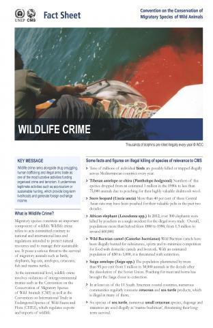 fact_sheet_wildlife_final_Page_1.jpg