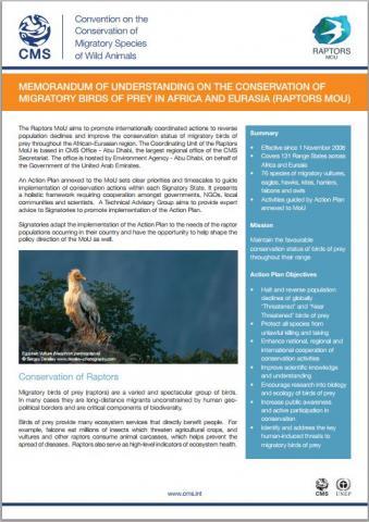 raptors factsheet.JPG