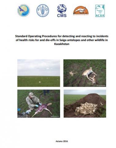 saiga-procedures-publication-cover.jpg