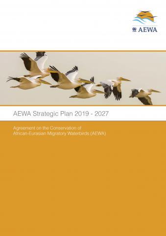 strategic_plan_mop7_9_Page_1.jpg