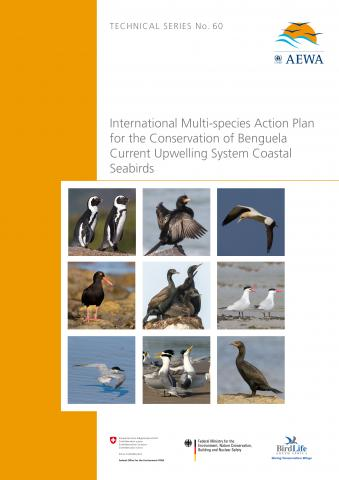 technical_series_multispecies_seabirds_action_plan_ver3.jpg