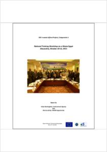 thumbnail.new?vault=Basel&file=UNEP-CHW-EWASTE-REP-TrainingWorkshop-20111010.English.pdf