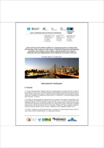 thumbnail.new?vault=Basel&file=UNEP-CHW-RC-POPS-RM.17-GRULAC-InformationForParticipants.English.pdf