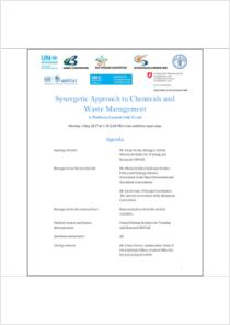 thumbnail.new?vault=Basel&file=UNEP-FAO-CHW-RC-POPS-COPS2017-SIDE08C-UNITAR-AGEN.English.pdf