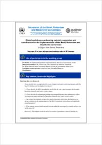 thumbnail.new?vault=Basel&file=UNEP-FAO-CHW-RC-POPS-Workshop-Synergies.16-WorkingGroup-PRENT-3B-1-20160623.En.pdf
