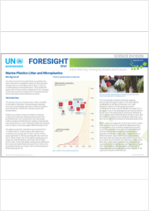 thumbnail.new?vault=Basel&file=UNEP-PLASTIC-PUB-ForesightBrief-002.English.pdf