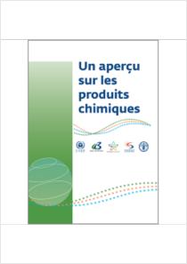 thumbnail.new?vault=Rotterdam&file=UNEP-FAO-RC-GEN-PUB-Chemical_snap_shot.French.pdf