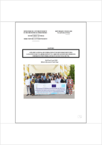 thumbnail.new?vault=Rotterdam&file=UNEP-FAO-RC-Workshop-Togo-Report-20180409.French.pdf