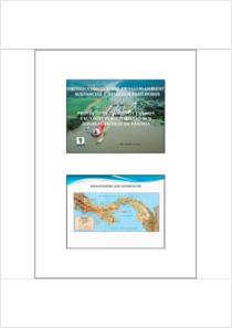 thumbnail.new?vault=Stockholm Production&file=UNEP-POPS-BATBEPWK1-CS01.Spanish.pdf