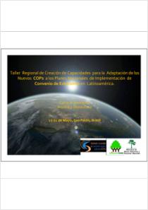 thumbnail.new?vault=Stockholm Production&file=UNEP-POPS-CB.11-CP-06.Sp.pdf