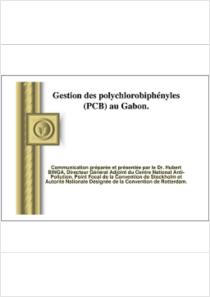thumbnail.new?vault=Stockholm Production&file=UNEP-POPS-CB.6-CP-Gabon2.Fr.pdf