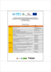 thumbnail.new?vault=Stockholm Production&file=UNEP-POPS-NIPs-WS-Brazil-Agenda-20180619.English.pdf