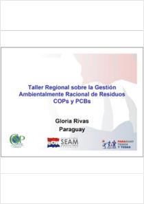 thumbnail.new?vault=Stockholm Production&file=UNEP-POPS-PENTGM.1-CP-Paraguay.Sp.pdf