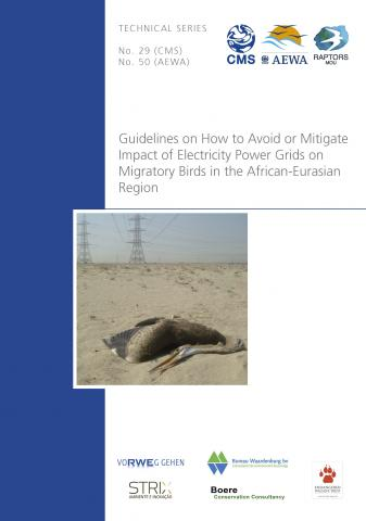 ts50_electr_guidelines_cover.jpg
