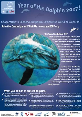 year_of_the_dolphin_poster_thumbnail.jpg