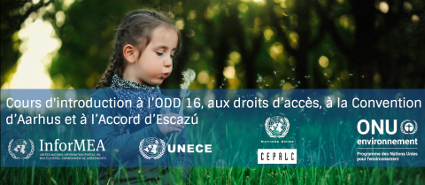 sdg-french.png