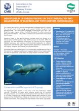 dugong_factsheet_image.PNG