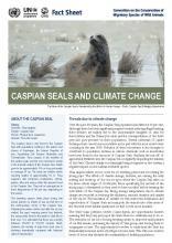 fact_sheet_caspian_seal_climate_change_Page_1.jpg
