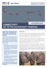 fact_sheet_connectivity_new_Page_1.jpg