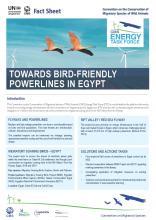 fact_sheet_etf_egypt_Seite_1.jpg