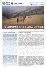 fact_sheet_eurasian_steppe_climate_change_Page_1.jpg