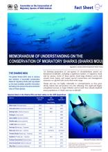 fact_sheet_sharks_english_Page_1.jpg