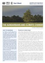 fact_sheet_sundarbans_climate_change_Page_1.jpg