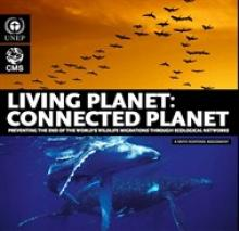living-planet-190px.jpg