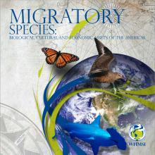 migratory species_3_0_0.jpg