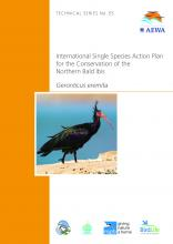 technical_series_northern_bald_ibis_Page_1.jpg