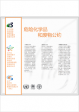 thumbnail.new?vault=Rotterdam&file=UNEP-FAO-RC-GEN-PUB-3_conventions.Chinese.pdf